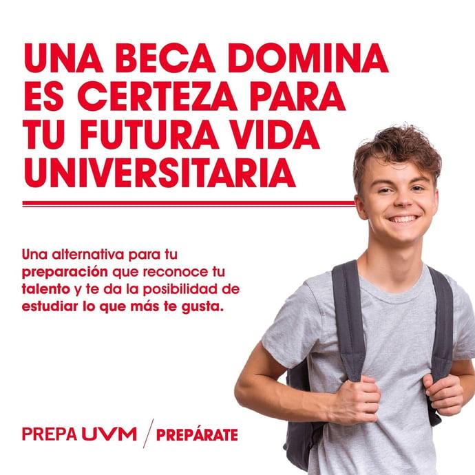 BECA DOMINA_CERTEZA EN BLOG