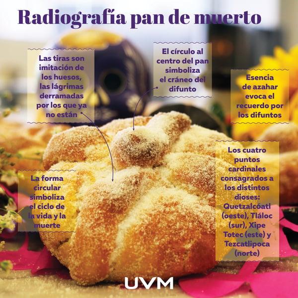 radiografia pan de muerto