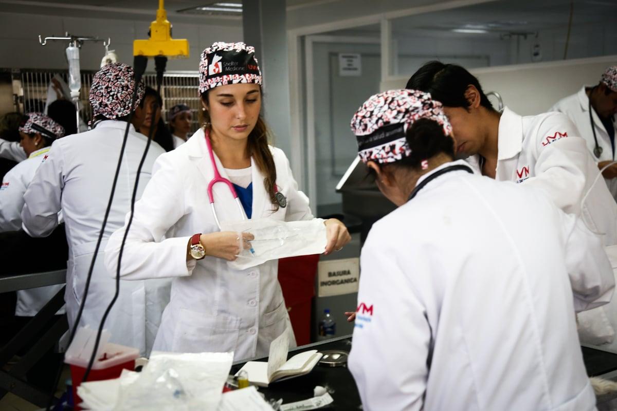 trabajo_hospital_veterinario