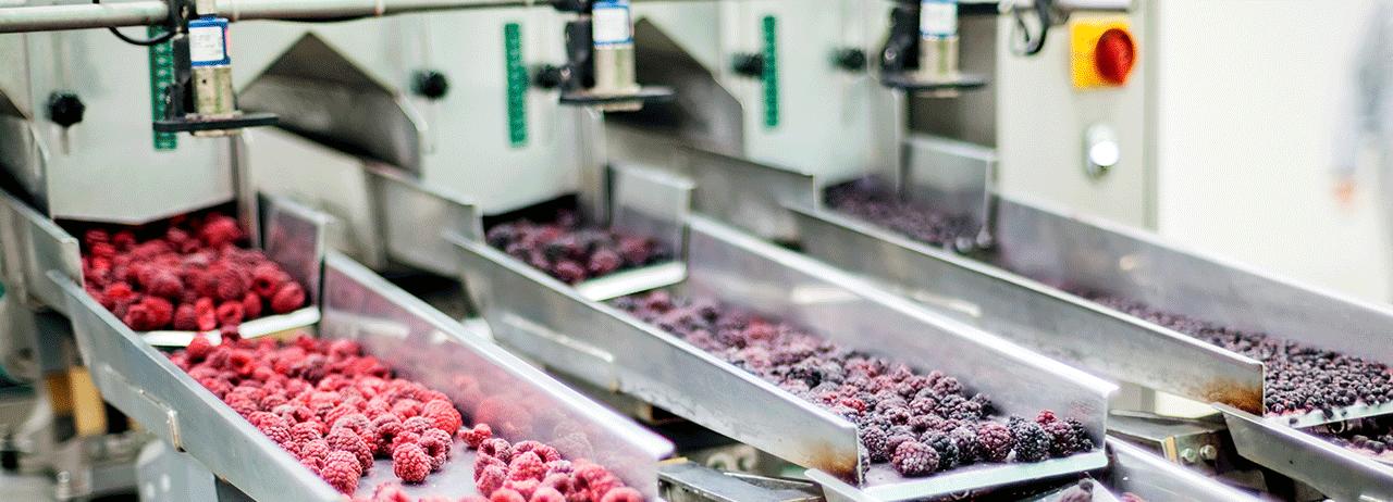 Biotecnología para asegurar los alimentos del futuro