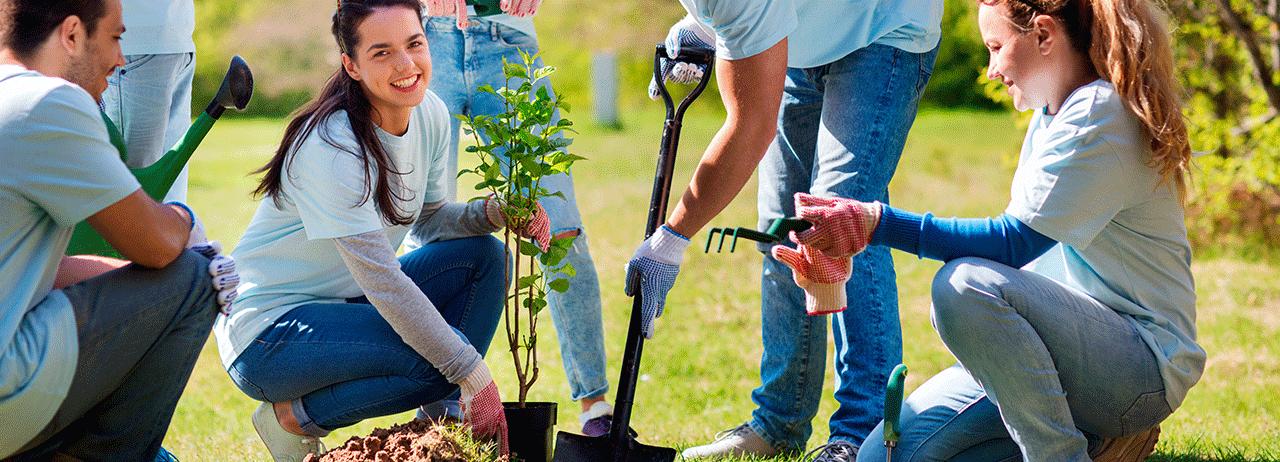 5 cosas que dañarán el ambiente