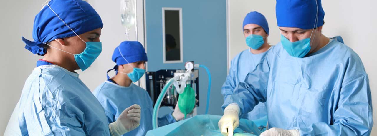 Tecnología y práctica, claves para estudiar las Ciencias de la Salud